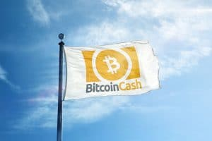 Bitcoin Cash Price Predictions 2019